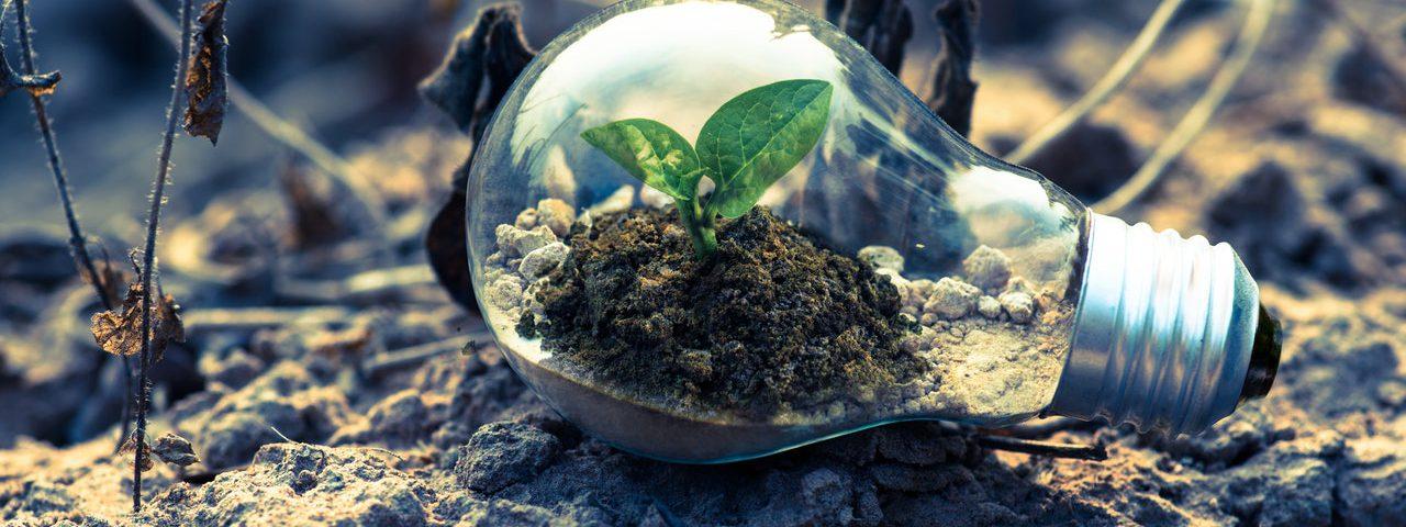 5 dicas de economia de energia que ajudarão o planeta (Foto de Singkham no Pexels)